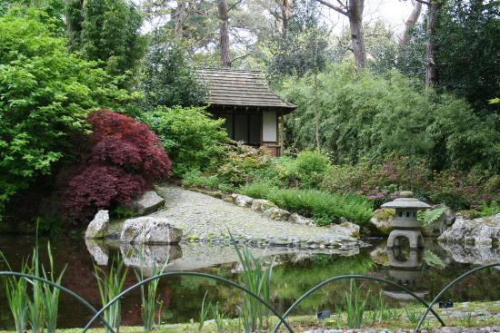 Pinetum Park and Pine Lodge Gardens