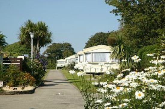 Mount's Bay Caravan Park