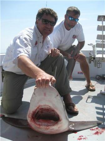 Sport Fishing Gullah Gal: 8' 150 lb. Bull Shark
