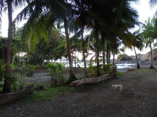 Costa Paraiso: Entrance to beach