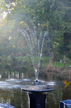 Sheene Mill: Fountain