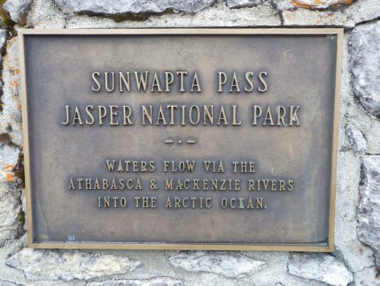 Sunwapta Pass