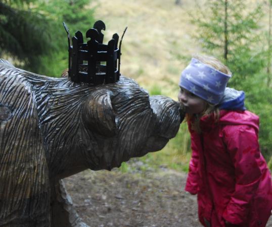 Hedmark, Norwegia: Stubberudskogen i Åsmarka - et lite eventyr!