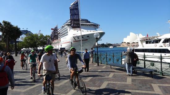Bike Buffs - Sydney Bicycle Tours: Overseas passenger terminal