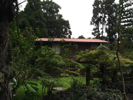 Volcano Country Cottages: artist cottage from grounds