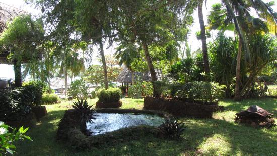 Ras Nungwi Beach Hotel : dans les  jardins  du  ras  nungwi