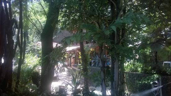O Veleiro Bed and Breakfast : The garden