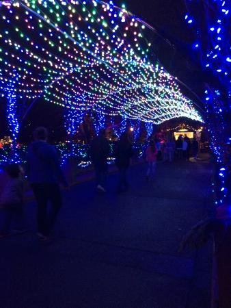 phipps conservatory and botanical gardens outdoor christmas light display