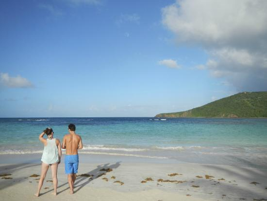 Moonlight Bay Hostel : Flamenco Beach on the island of Culebra