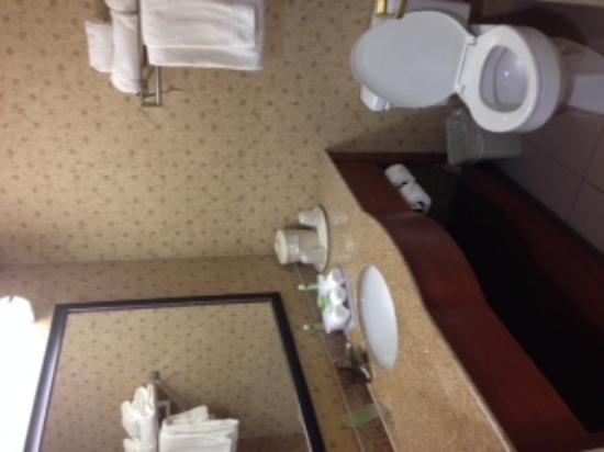 Holiday Inn Express & Suites Jacksonville Airport: bathroom