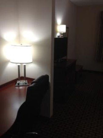 Comfort Inn & Suites: TV