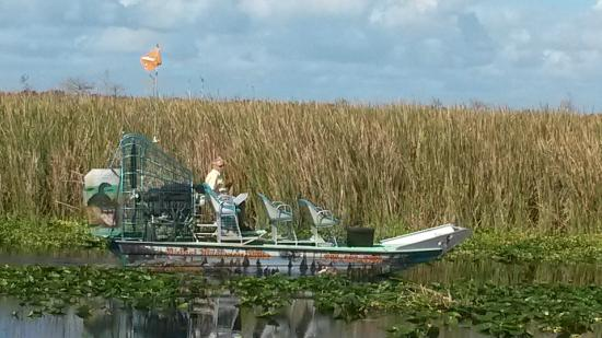 Airboat Wilderness Rides: Waiting to pull in to board