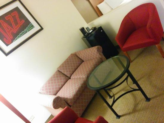 Chicago South Loop Hotel: Sitting Room