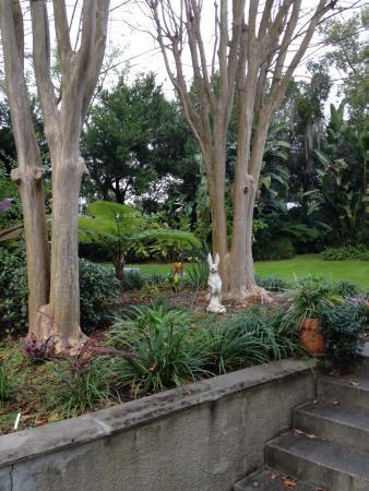 Lakeside Inn: Garden