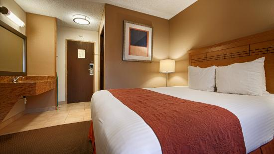 Best Western Aladdin Inn: Standard Single Queen guest room