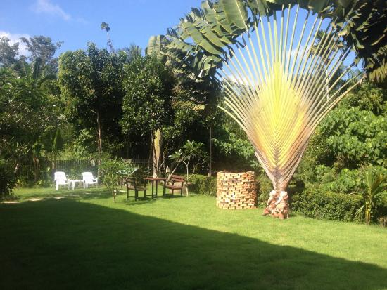 لانتا ثيب هاوس: Jardin devant bungalow