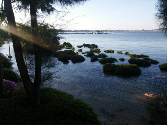 Tamarina Resort: Morning light with high tide.
