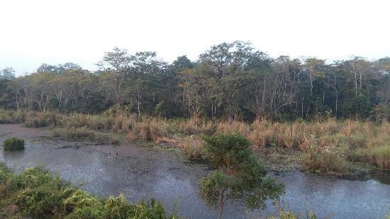 Into The Wild Eco Resort