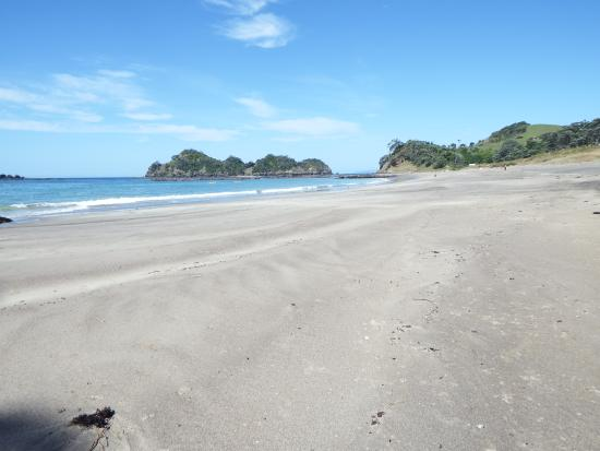 Otamure Bay (Whananaki) Campsite: Otamure Beach
