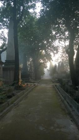 South Park Street Cemetery: The main pathway