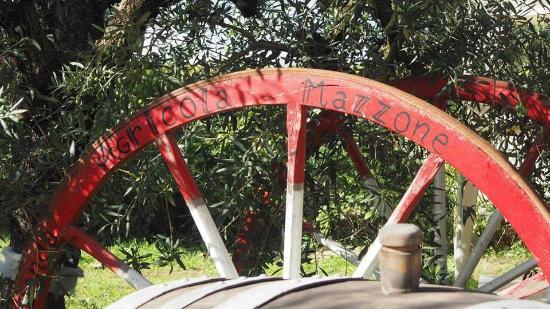 Azienda Agricola Mazzone