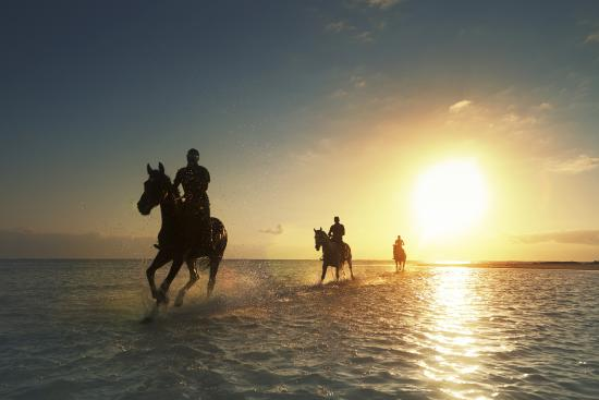 LUX* Belle Mare Horse Riding