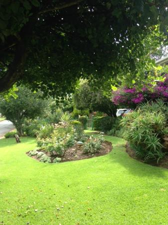 Shamrock Arms Guest Lodge: beautiful garden