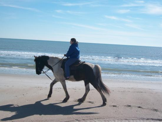Horseback Riding of Myrtle Beach: Myrtle Beach