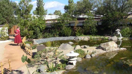 Yume Japanese Gardens: Nice Pond