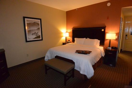 Hampton Inn & Suites Sevierville @ Stadium Drive: Standard king-bed room at Hampton Inn.
