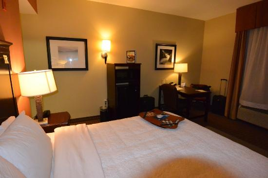 Hampton Inn & Suites Sevierville @ Stadium Drive: King-bed room at Hampton Inn with microwave and fridge and desk.