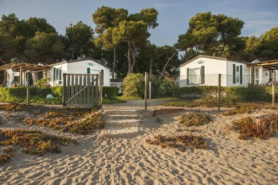 Las Palmeras Camping: Bungalows Beach Premium