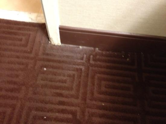 Sheraton Suites Houston Near The Galleria : Floor not cleaned before check-in
