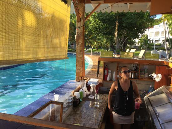 Pool Bar Picture Of Bluebeard S Beach Club And Villas St Thomas