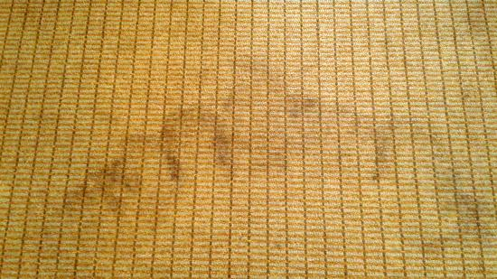 Best Western Plus Hotel & Conference Center: Floor in Canton room