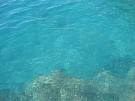 Ruga Nova Mercatorum (Via dei Mercanti): A cor do mar de Amaldi. Lindo.