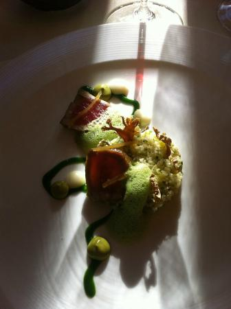 L'Auberge Provencale Restaurant: ahi tuna with cauliflower, green olive, lemon and parsley...yum