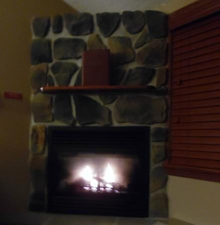 Fireside Inn & Suites: This was the fireplace in our room!