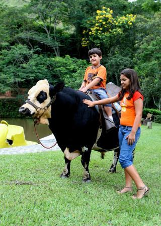 Hotel Fazenda Cascatinha: animais de fazenda