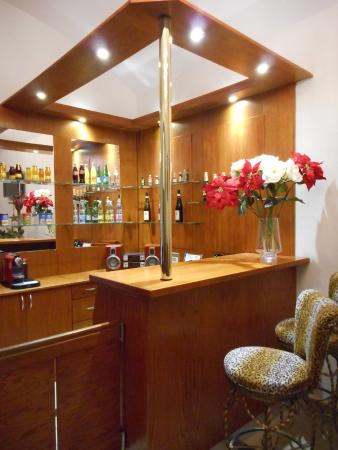 Aparthotel Lublanka: Nonstop bar reception