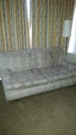 Edmonton Inn and Conference Centre: Beautiful furniture