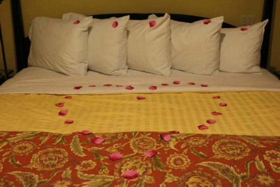 Stone Hill Inn: Rose petals laid out for proposal