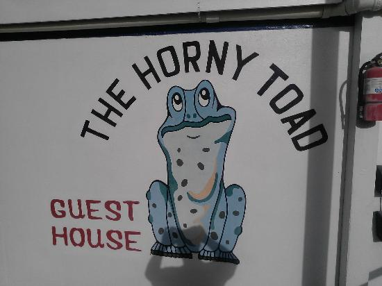 The Horny Toad Guesthouse : Look for this sign