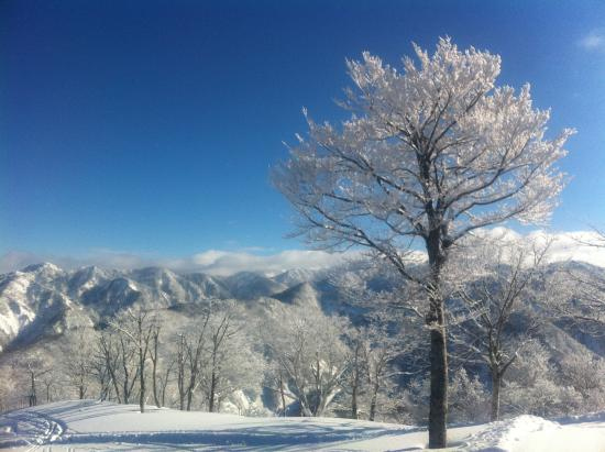 Hakusan Seymour Ski Resort