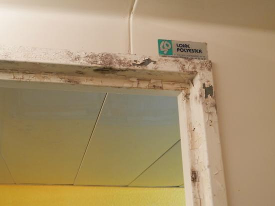 HotelF1 Vernon: moisissures sur la porte de douche