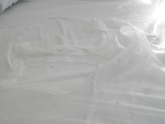 HotelF1 Vernon: matelas déchiré