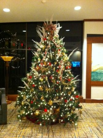 DoubleTree by Hilton Williamsburg: Beautiful Christmas Tree in the Foyer