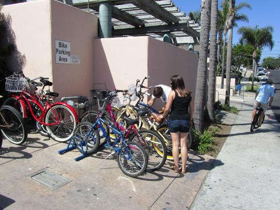 Dini's By The Sea: For your Beach Cruiser