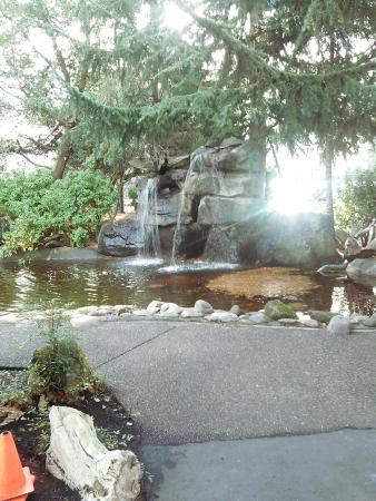Radisson Hotel Portland Airport: The Waterfall In Front