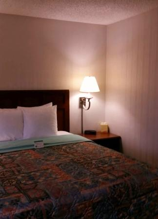 Portland North Days Inn: Warm and welcoming rooms